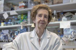 MARGARITA SALAS Nació el 30/11/1938 en Asturias y murió el 07/11/2019 en Madrid. Estudió Química en la Universidad Complutense de Madrid y en la Universidad de Chile. A lo largo de su vida fue profesora de la Universidad de Nueva York y de la Universidad Complutense de Madrid y la Universidad Autónoma de Madrid; y miembro del Consejo Superior de Investigaciones Científica y del Centro de Biología Molecular Severo Ochoa. El centro de su estudio fue el virus Phi29, descubrió que tenía una proteína ADN polimerasa esencial para la duplicación del ADN. Tiene una aplicación crucial en biotecnología: permite amplificar el ADN de manera sencilla, rápida y fiable. Es utilizado actualmente en la medicina forense, en oncología y la arqueología, entre otras áreas.