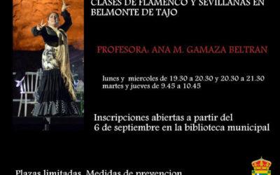 CLASES DE FLAMENCO Y SEVILLANAS